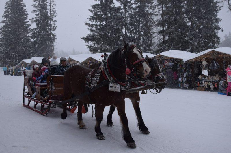 10 Horse And Sleigh Ride High Tatras Strbske Pleso