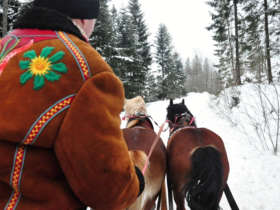 Horse Carrige Ride High Tatras 2
