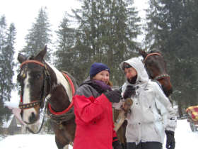 Horse Carrige Ride High Tatras 4