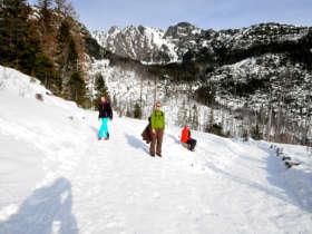 Winter Walk Hrebienok High Tatras