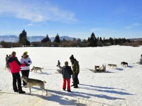 Slovakia Family Winter High Tatras 16