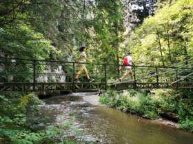 Bridge Slovak Paradise Walking