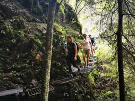 Guided Walk Prielom Hornadu Slovak Paradise