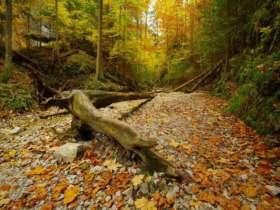 Walking Hiking Slovak Paradise National Park 17