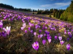 Walking Hiking Slovak Paradise National Park 2