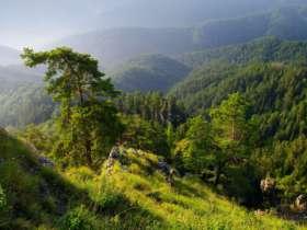 Walking Hiking Slovak Paradise National Park 24