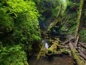 Walking Hiking Slovak Paradise National Park 31