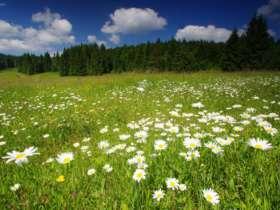 Walking Hiking Slovak Paradise National Park 45