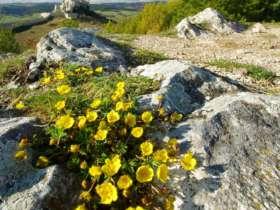 Walking Hiking Slovak Paradise National Park 5