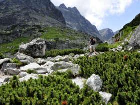 High Tatras Walking Tour Slovakia 8
