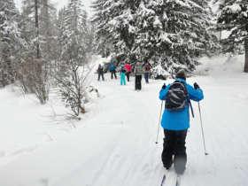Cross Country Skiing High Tatras Strbske Pleso 4