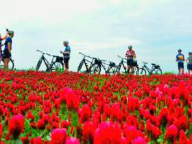 1 cycle tour prague vienna 1