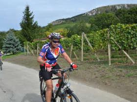 Cycling Moravia Mikulov