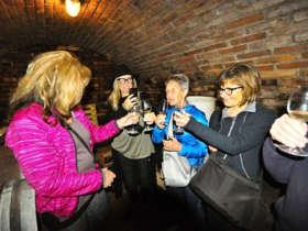 Discover slovakia wine tastig skalica