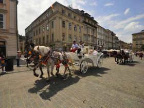 11 krakow sightseeing