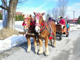 Horse Sleigh Carriage Ride Zdiar Tatras