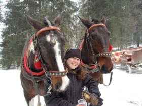 1 Zdiar Horse Sleigh Ride 19