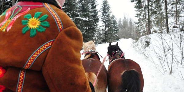 1 Zdiar Horse Sleigh Ride 11