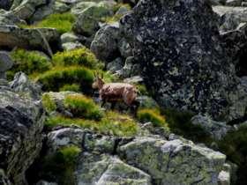 Tht Walking High Tatras Slovakia 11