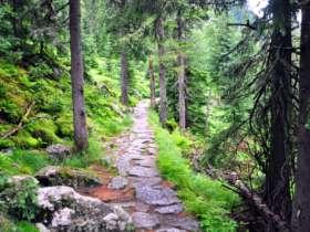 Tht Walking High Tatras Slovakia 5