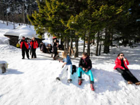 Winter Walk Tatra Mountains