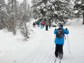 Cross Country Skiing Tatras Slovakia 3