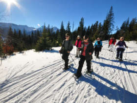 Snowshoeing Winter Walking Tatras Slovakia 1