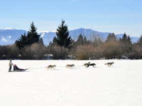 Slovakia Family Winter High Tatras 13