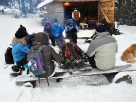 Grilling Open Fire Tatras Picnic