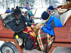 Horse Carriage Ride Zdiar Tatras