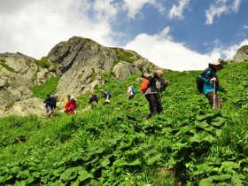 Slovakia Tours Walking High Tatras 19