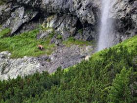 Slovakia Tours Walking High Tatras 8