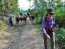 Tvt Walking Hiking Trekking High Tatras Slovakia 21
